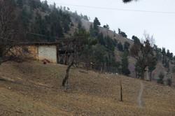 türkmenler-eray'ca (375)