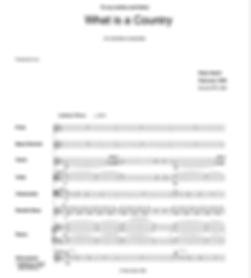 What is a County sample.png