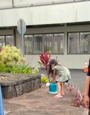 Kokone fills water pitcher