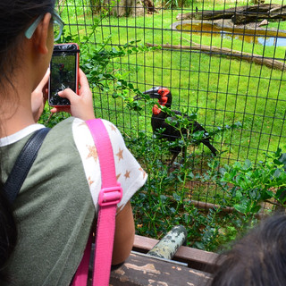 What a wonderful day at the Zoo!