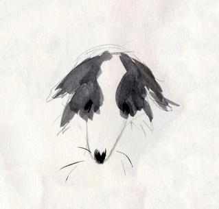 Kingsley Rough - 23.08.18 - Marilena Nes