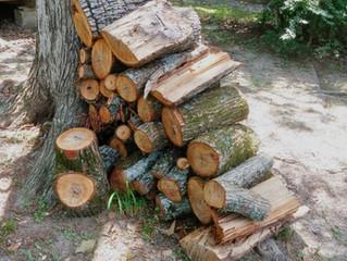 Inscriptions pour le bois de fond de coupe