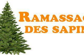 RAPPEL : Collecte des sapins de Noël le mercredi 9 janvier