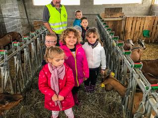 L'école visite la chèvrerie des prés