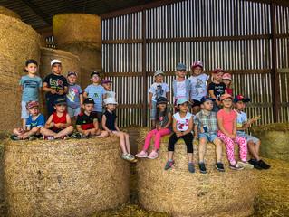 La maternelle en sortie à la ferme