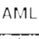 AMLapp_logo_NEG_01.png