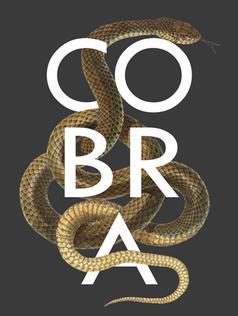 Cobra gray.png