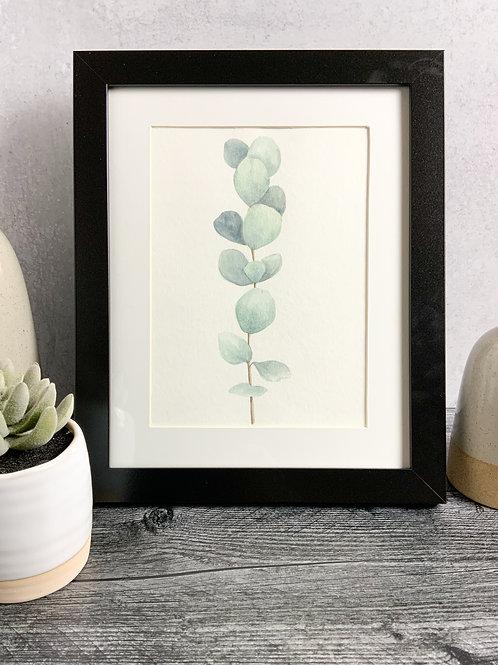Eucalyptus Sprig - Original Watercolor