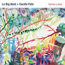 """Big Nant """"Camino y selva"""""""