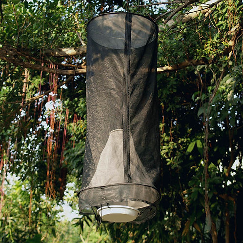Pop-up Butterfly Bait Trap (dia10-cm cone) -  DC0017
