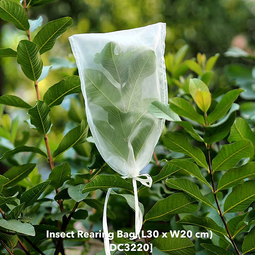 Insect rearing bag (L30 x W20cm) DC3220