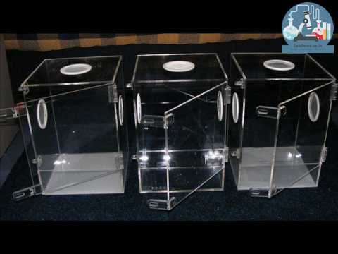 Insect or Mosquito Acrylic Cage 4S1010