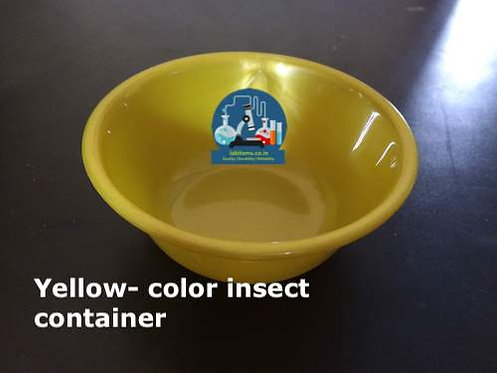 Insect container small