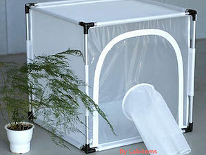 Insect Rearing Cage BD6S610_01.jpg