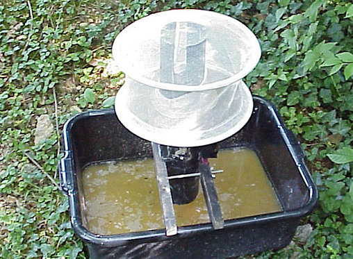 Active oviposition gravid trap for blood fed mosquito collections