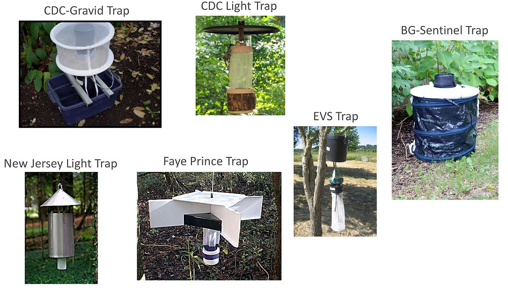 Various types of mosquito traps available for research to catch live insects (CDC light trap, New Jersy light Trap, Faye Prince Trap, CDC Gravid Trap, Biogents Sentinel Trap, BGS Trap