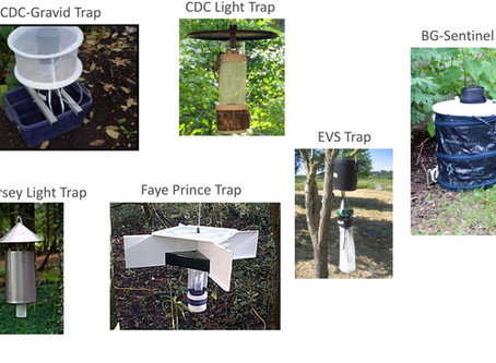 Mosquito traps for research