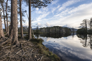 Loch Mallachie.jpg