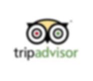 tripadvisor9.png
