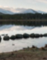 Ducks swim near a group of stones on the