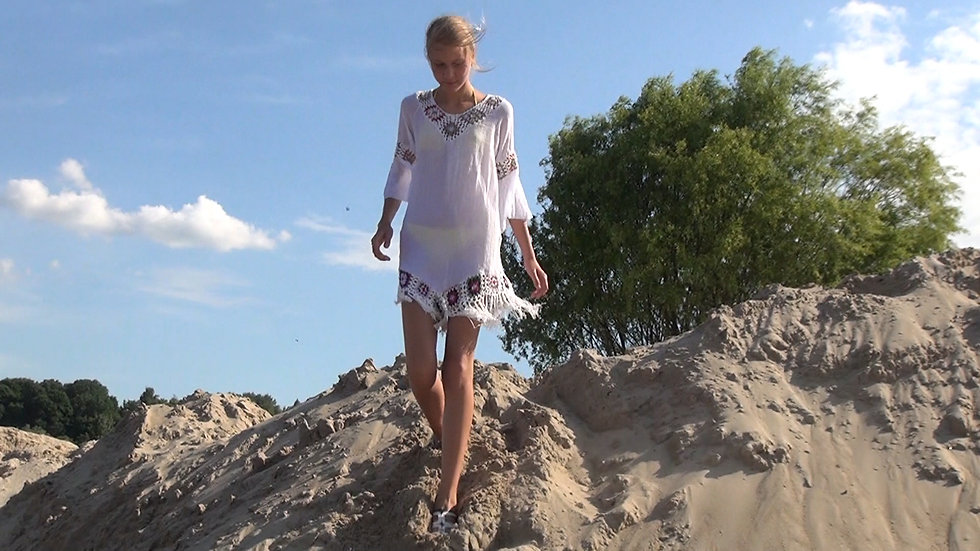 Video: River sand dunes 2