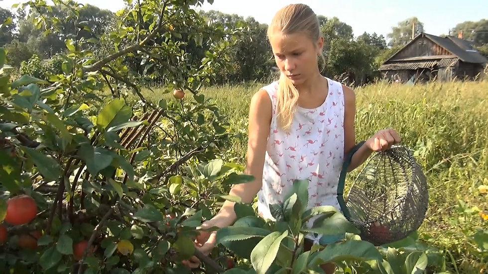 Video: I pick apples.