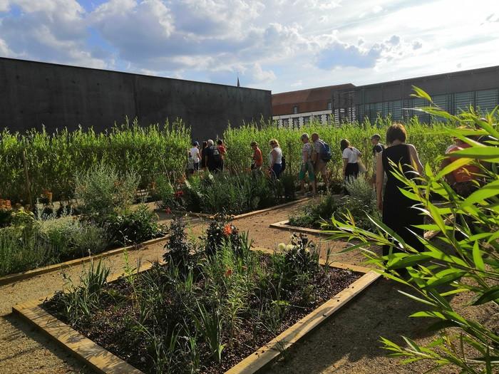 Visite sensorielle des Jardins de la Culture par AcceSens