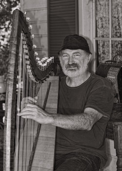 Andy Rigby- Harp player