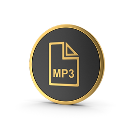 Gold Icon MP3 File.I02_edited.png