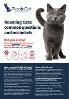 Roaming cats factsheet.jpg