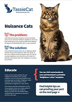 Nuisance cats factsheet.jpg