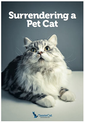 Surrender a pet cat brochure - TassieCat