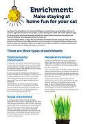 Enrichment brochure - TassieCat