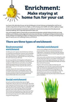Enrichment Factsheet - TassieCat