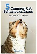 5 Common cat behavioural issues brochure - TassieCat