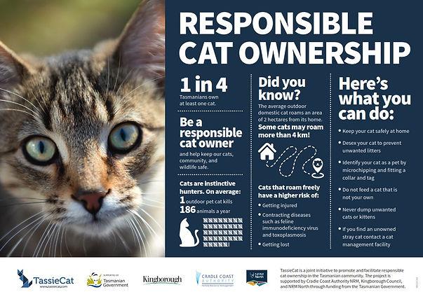 Responsible cat ownership infographic.jp