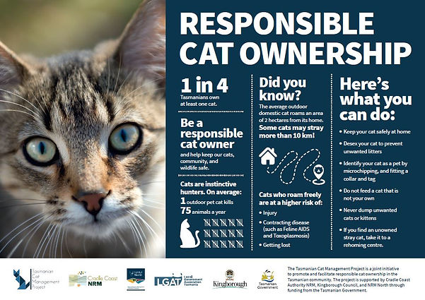 Responsible Cat Ownership poster - TassieCat