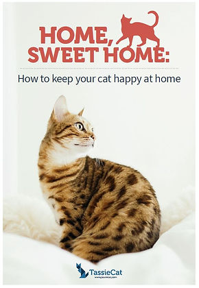 Home, sweet home brochure - TassieCat