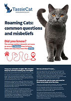 Roaming cats frontpage.jpg