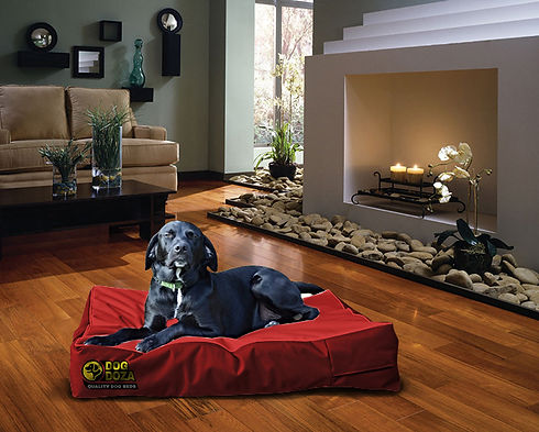wholesale dog beds uk pet products distributor trade oem