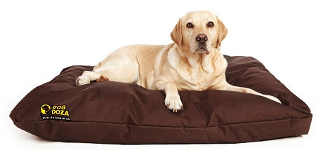 Dog Doza Waterproof Cushion Bed Various Sizes - Colours