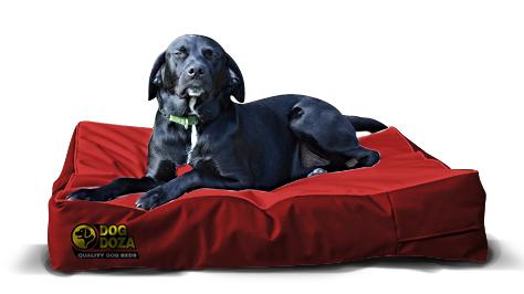 doza dog mattress ortho red 1
