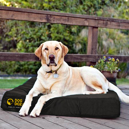 XL Orthopaedic 100% Memory Foam Dog Bed Slab XL Size: 150cm x 80cm x 15cm
