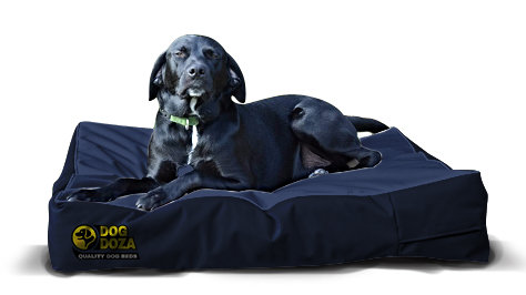 Orthopaedic Waterproof Dog Mattress Various Sizes - Colours