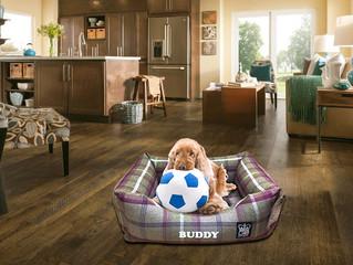 New Memory Foam Dog Beds