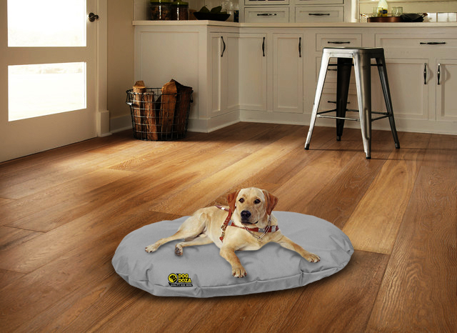 dog on grey oval bed with background