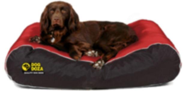 waterproof dog beds uk durable xl size