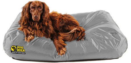 Active Waterproof Dog Bed Memory Foam Crumb Various Sizes & Colours