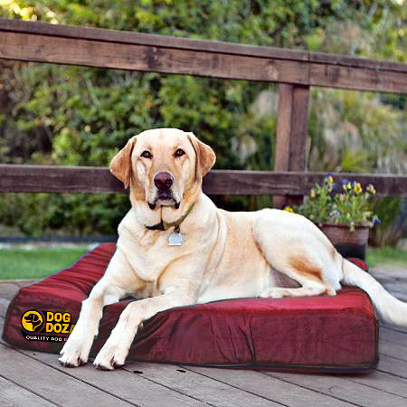 Orthopaedic 100% Memory Foam Dog Bed Slab Various Sizes - Colours
