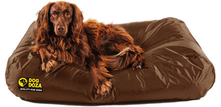 Active Waterproof Dog Bed Memory Foam Crumb Various Sizes & Colour